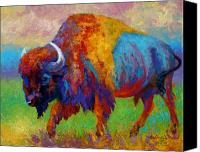 Prairie Canvas Prints - A Journey Still Unknown - Bison Canvas Print by Marion Rose