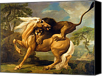Oil Cat  Canvas Prints - A Lion Attacking a Horse Canvas Print by George Stubbs