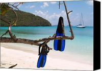Views Canvas Prints - A Maho Bay Snorkel Canvas Print by Richard Mansfield