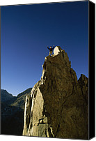 Success Photo Canvas Prints - A Man Stands Atop A Mountain Canvas Print by Gordon Wiltsie