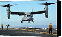 Osprey Canvas Prints - A Mv-22 Osprey Aircraft Prepares Canvas Print by Stocktrek Images