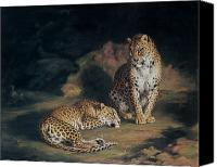 Oil Cat  Canvas Prints - A Pair of Leopards Canvas Print by William Huggins