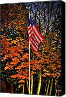 Flag Pole Canvas Prints - A Patriotic Autumn Canvas Print by David Patterson