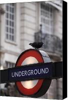 Rail Vehicles Canvas Prints - A Pigeon Perched On A London Canvas Print by Justin Guariglia