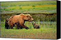 Kodiak Canvas Prints - A Protective Mother of Three Canvas Print by Dennis Blum