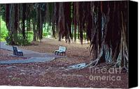 Park Benches Canvas Prints - A Quiet Resting Place Canvas Print by Bette Phelan