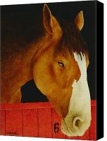 Horseback Canvas Prints - A real workhorse... Canvas Print by Will Bullas