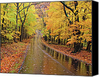 Indiana Autumn Digital Art Canvas Prints - A Road Not Taken Canvas Print by William Howard