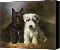 White Flowers Canvas Prints - A Scottish and a Sealyham Terrier Canvas Print by Lilian Cheviot