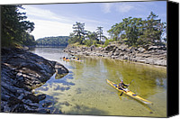 Valdes Canvas Prints - A Small Group Kayaks Canvas Print by Taylor S. Kennedy