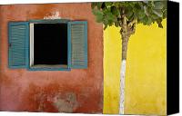 Senegal Canvas Prints - A Tree Outside A Colorful Building And Canvas Print by David DuChemin