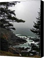 Acadia Canvas Prints - A Tricky Acadian Cove Canvas Print by Skip Willits