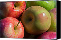 Apples Canvas Prints - A Variety Of Apples Canvas Print by Heidi Smith