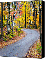 Vermont Autumn Foliage Canvas Prints - A Vermont Country Road Canvas Print by Thomas Schoeller