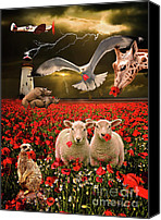 Gull Photo Canvas Prints - A Very Strange Dream Canvas Print by Meirion Matthias