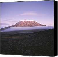Geography Canvas Prints - A View Of Snow-capped Mount Kilimanjaro Canvas Print by David Pluth