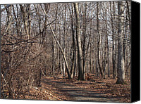 Farm In Woods Photographs Canvas Prints - A Walk In The Woods Canvas Print by Robert Margetts