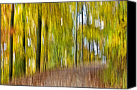 Susan Leggett Digital Art Canvas Prints - A Walk in the Woods Canvas Print by Susan Leggett