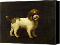 Dogs Canvas Prints - A Water Spaniel Canvas Print by George Stubbs