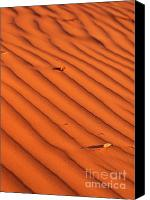 Coral Pink Sand Dunes Canvas Prints - A wave-like pattern on sand Canvas Print by Hideaki Sakurai