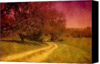 Country Dirt Roads Canvas Prints - A Winding Road - Bayonet Farm Canvas Print by Angie McKenzie