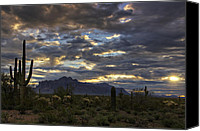 The Supes Canvas Prints - A Winter Sunrise in the Desert  Canvas Print by Saija  Lehtonen