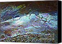 Abalones Canvas Prints - Abalone Stories Canvas Print by Gwyn Newcombe