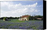 Bluebonnets Canvas Prints - Abandoned Stone Cottage in Field of Bluebonnets Canvas Print by Jeremy Woodhouse