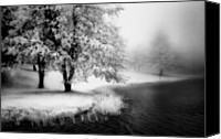 Otter Photo Canvas Prints - Abbots Lake in the Fog BW Canvas Print by Dan Carmichael