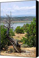 Chama River Canvas Prints - Abiquiu Lake New Mexico 2 Canvas Print by Vicki Pelham