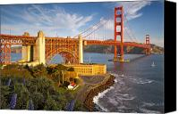 Golden Gate Bridge Tower Blue Sky Canvas Prints - Above the Golden Gate Canvas Print by Brian Jannsen