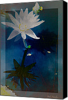 Lovely Looking Flower Mixed Media Canvas Prints - Abstract Lotus 1 Canvas Print by Debra     Vatalaro