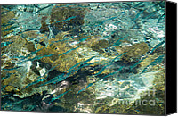 Natural Abstract Canvas Prints - Abstract of the Underwater World. Production by Nature Canvas Print by Jenny Rainbow