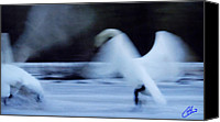 Colette Canvas Prints - Abstract Swan Dance Canvas Print by Colette Hera  Guggenheim