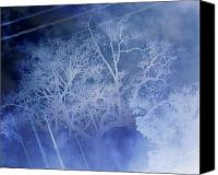 Creepy Digital Art Canvas Prints - Abstract with Creepy Tree- Ghost Story Canvas Print by Kristin Sharpe