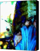 Akermans Art Canvas Prints - Abstraction MW Canvas Print by Beth Akerman