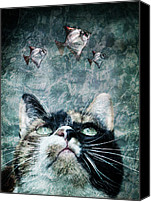 Black Special Promotions - Abyss cat nr 2 Canvas Print by Laura Melis