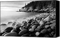 Otter Photo Canvas Prints - Acadia Radiance - Black and White Canvas Print by Thomas Schoeller