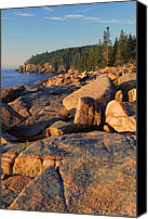 Acadia Canvas Prints - Acadia Seacoast Canvas Print by Stephen  Vecchiotti