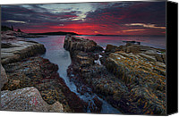 Acadia Canvas Prints - Acadias Lights Canvas Print by Bernard Chen