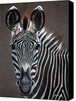 Zebra Pastels Canvas Prints - African Beauty Canvas Print by Deb Owens