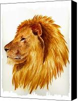 Lion Canvas Prints - African Male Lion Canvas Print by Michael Vigliotti