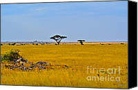 Landscapes Digital Art Special Promotions - African Savanna Canvas Print by Pravine Chester