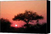 Ladnscape Canvas Prints - African Sunset Canvas Print by David Lane
