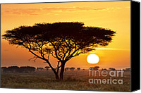 Views Canvas Prints - African Sunset Canvas Print by Richard Garvey-Williams