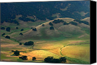 Lush Canvas Prints - Afternoon Sunlight On Round Valley Canvas Print by Marc Crumpler