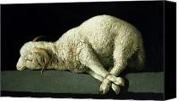 Religious Canvas Prints - Agnus Dei Canvas Print by Francisco de Zurbaran