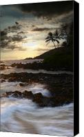Hawaii Beach Art Canvas Prints - Ahe lau Makani O Paako Canvas Print by Sharon Mau