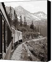 Black And White Pyrography Canvas Prints - Alaskan Train Canvas Print by Will Edwards