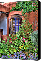 Albuquerque Canvas Prints - Albuquerque Garden Canvas Print by David Patterson
